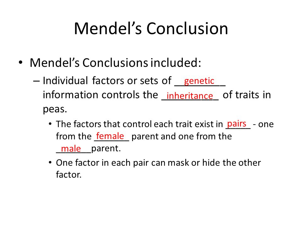 Mendel's Conclusion Mendel's Conclusions included: