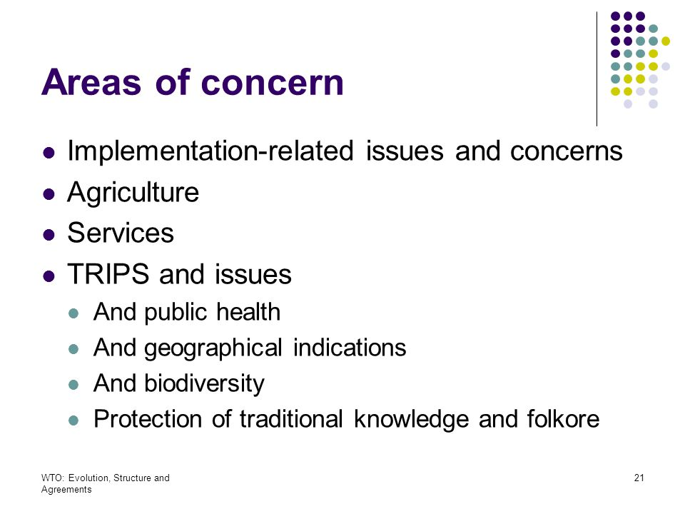 Areas of concern Implementation-related issues and concerns