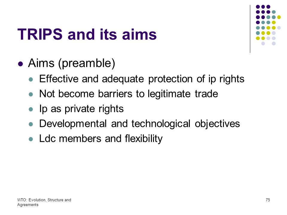TRIPS and its aims Aims (preamble)