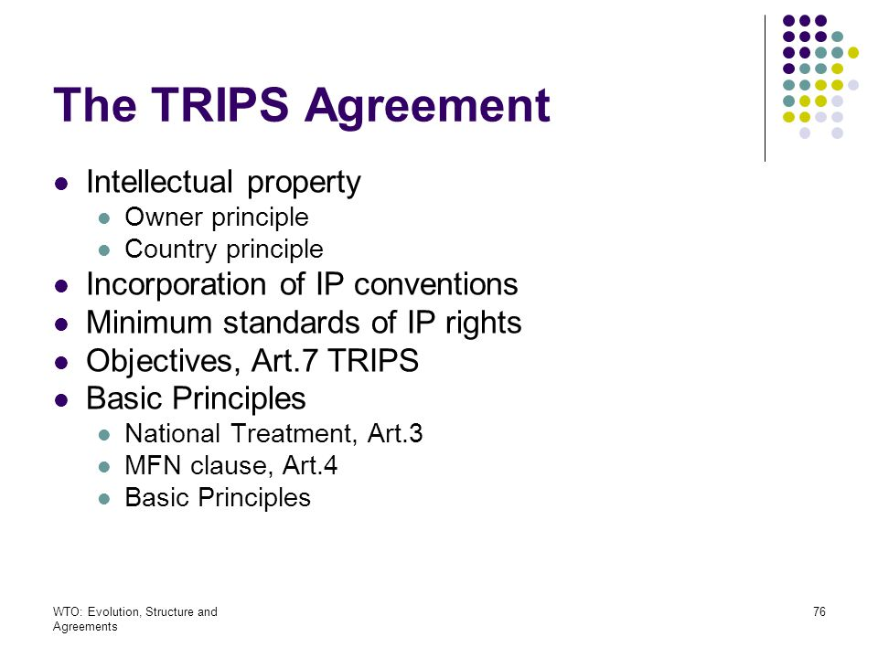 The TRIPS Agreement Intellectual property