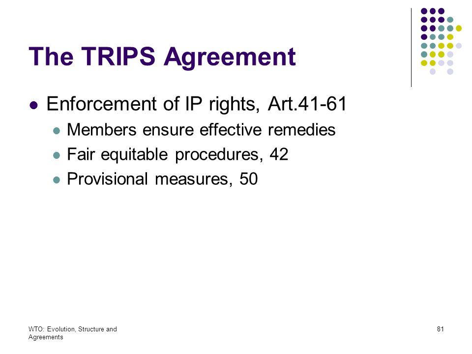 The TRIPS Agreement Enforcement of IP rights, Art.41-61
