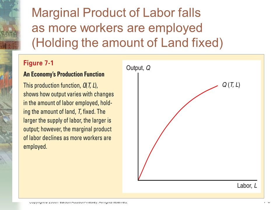 Marginal Product of Labor falls as more workers are employed (Holding the amount of Land fixed)