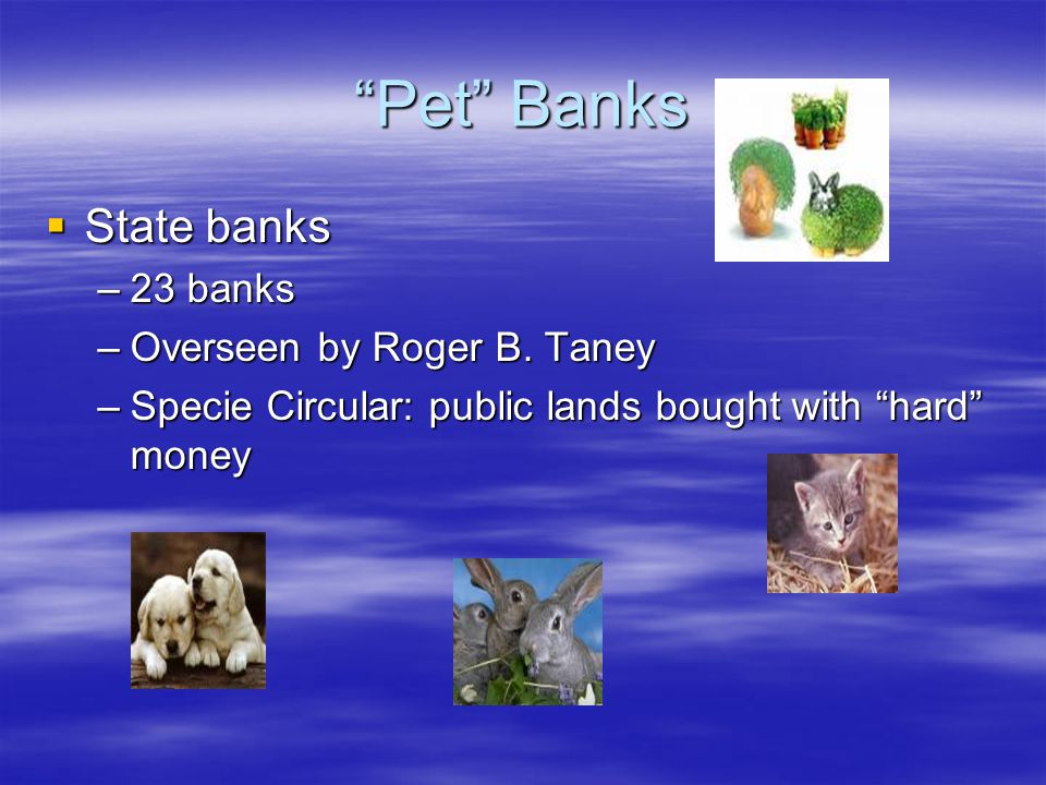 Pet Banks State banks 23 banks Overseen by Roger B. Taney