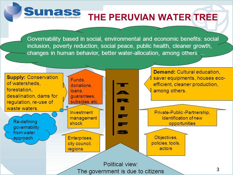 THE PERUVIAN WATER TREE