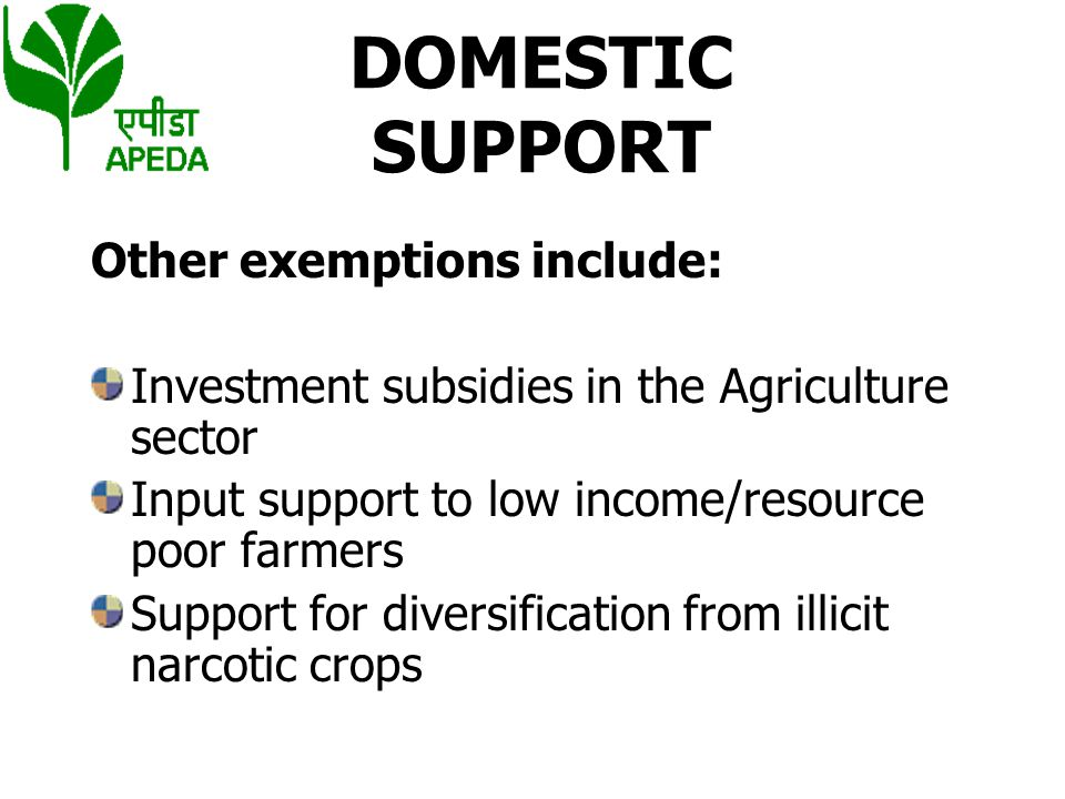 DOMESTIC SUPPORT Other exemptions include:
