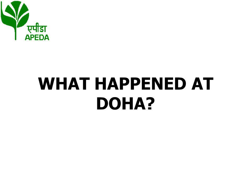 WHAT HAPPENED AT DOHA