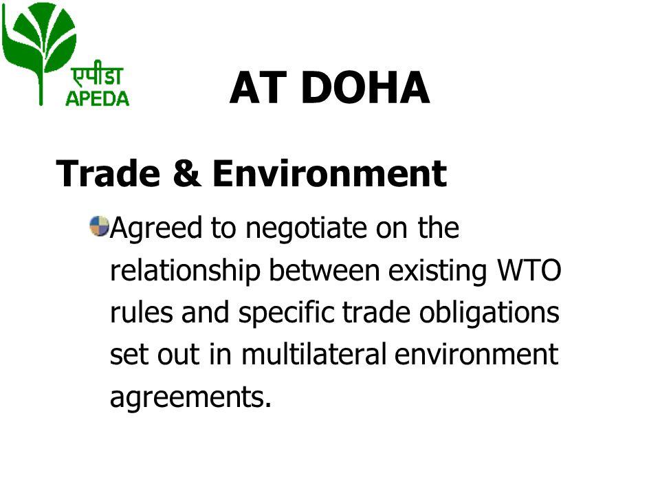 AT DOHA Trade & Environment