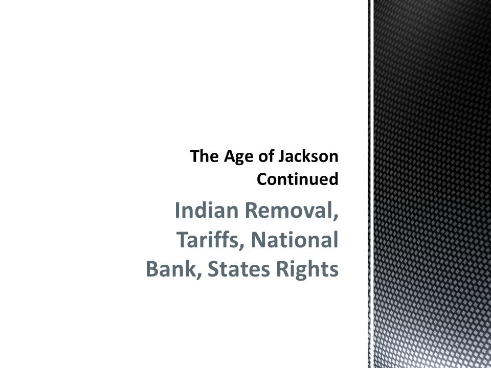 The Age of Jackson Continued