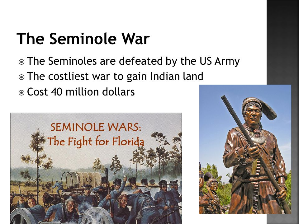The Seminole War The Seminoles are defeated by the US Army