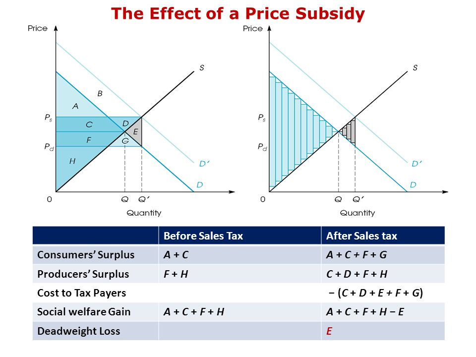 The Effect of a Price Subsidy