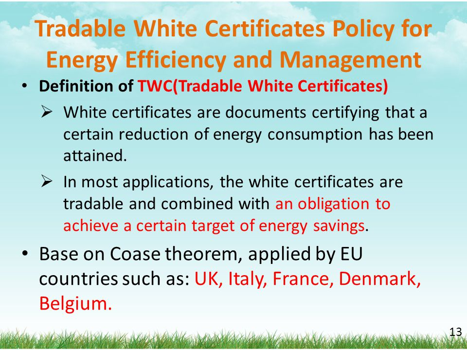 Tradable White Certificates Policy for Energy Efficiency and Management