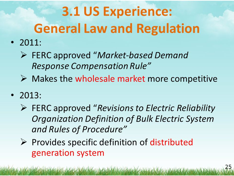 3.1 US Experience: General Law and Regulation