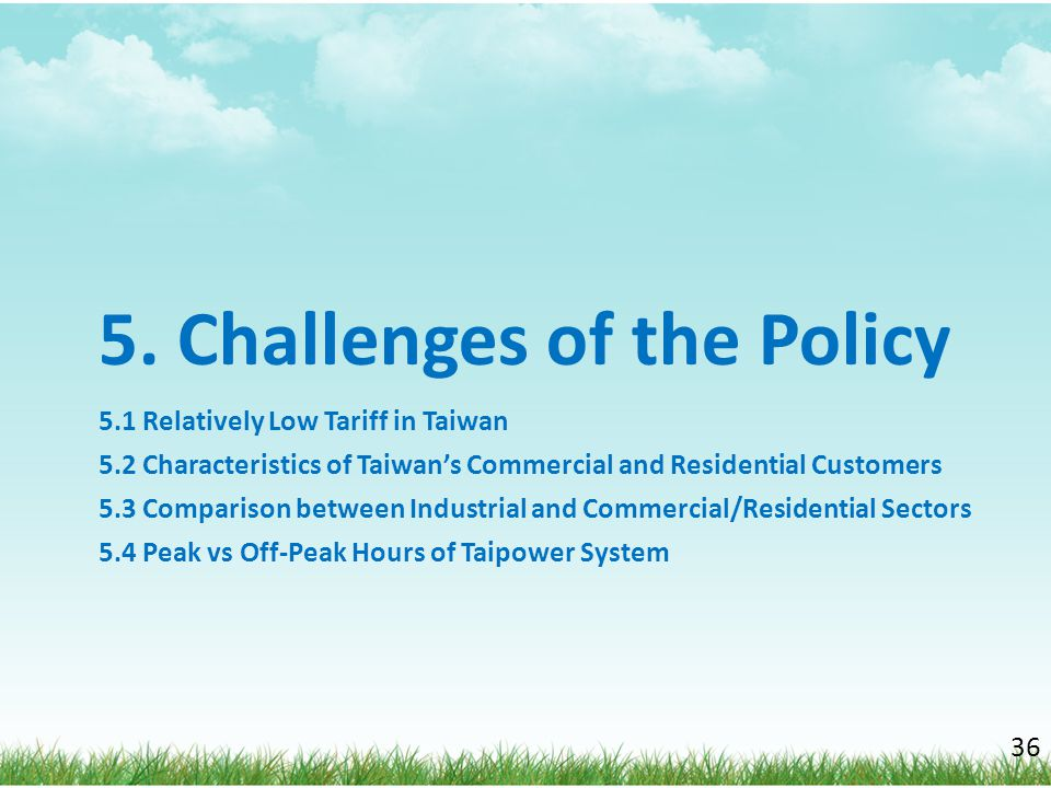 5. Challenges of the Policy