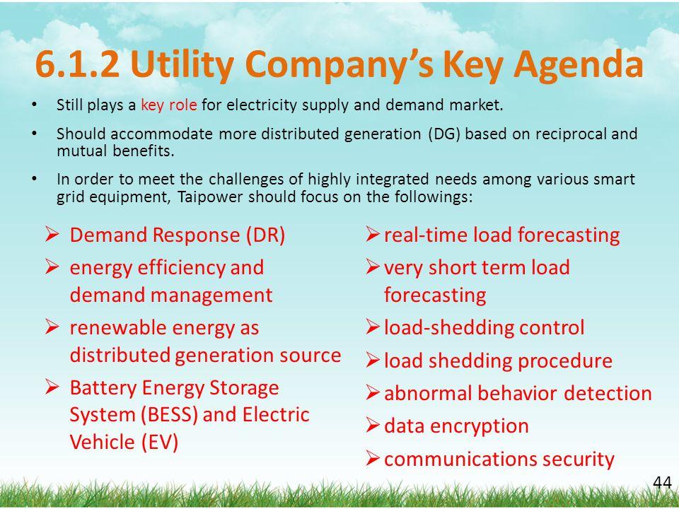 6.1.2 Utility Company's Key Agenda