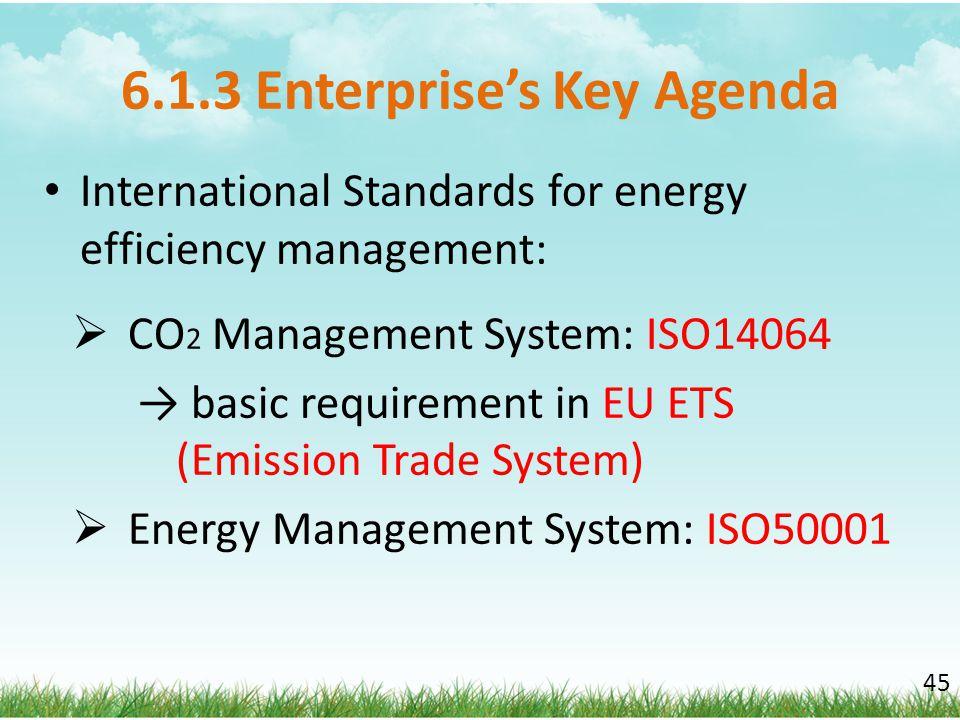 6.1.3 Enterprise's Key Agenda