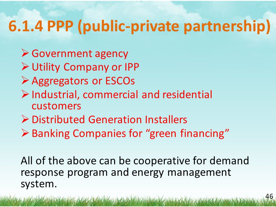 6.1.4 PPP (public-private partnership)