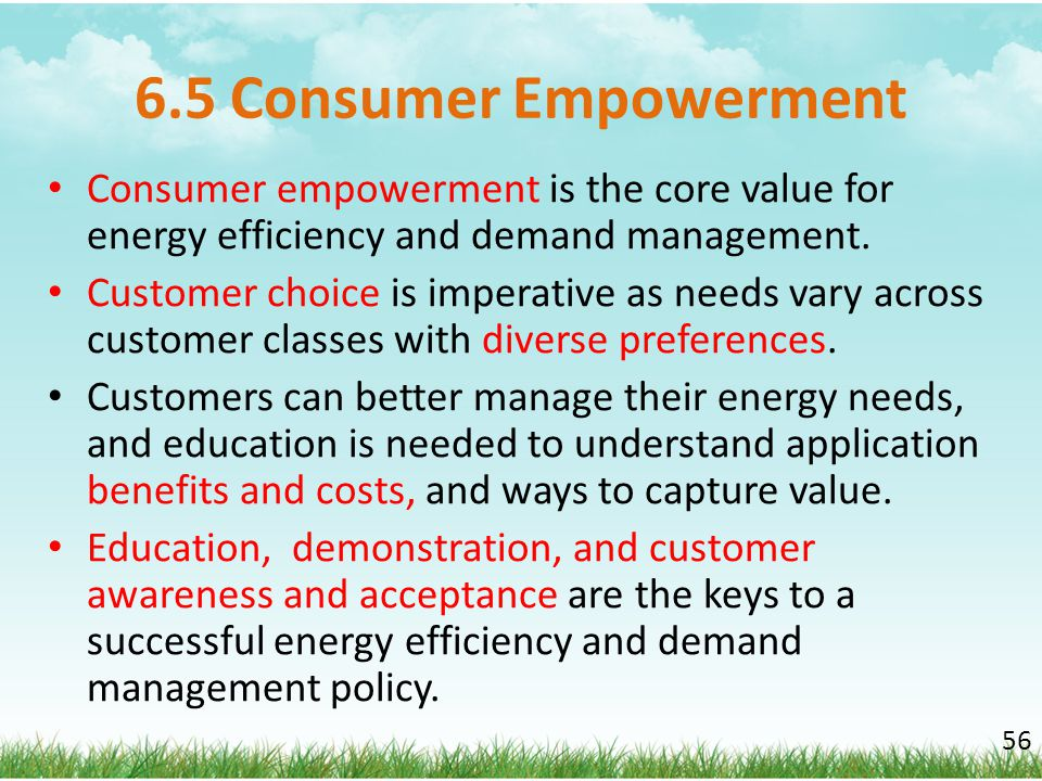 6.5 Consumer Empowerment Consumer empowerment is the core value for energy efficiency and demand management.