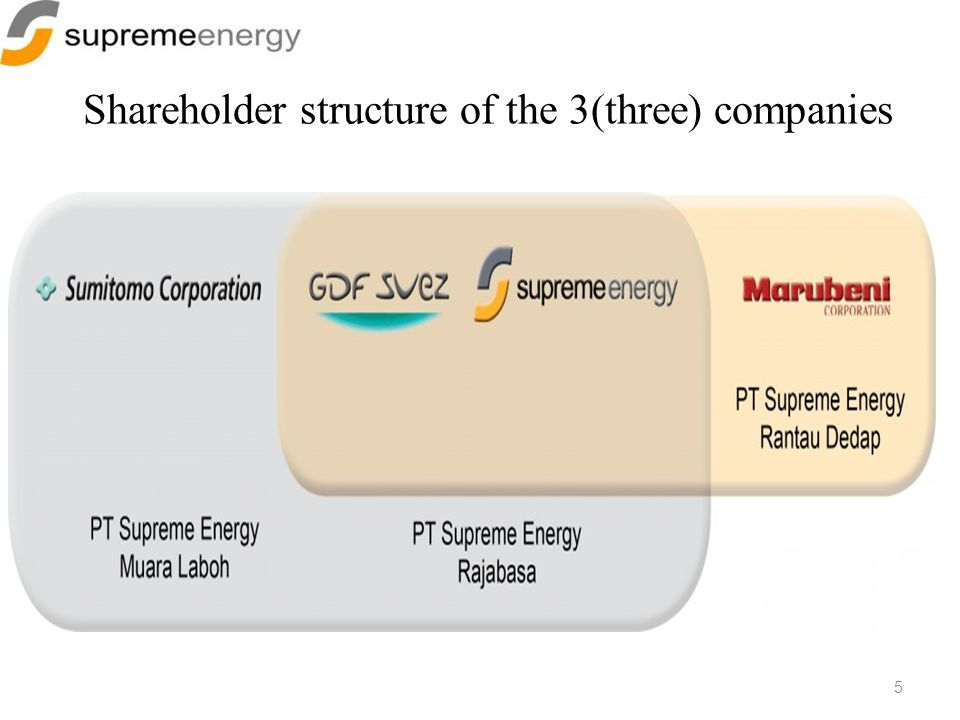 Shareholder structure of the 3(three) companies