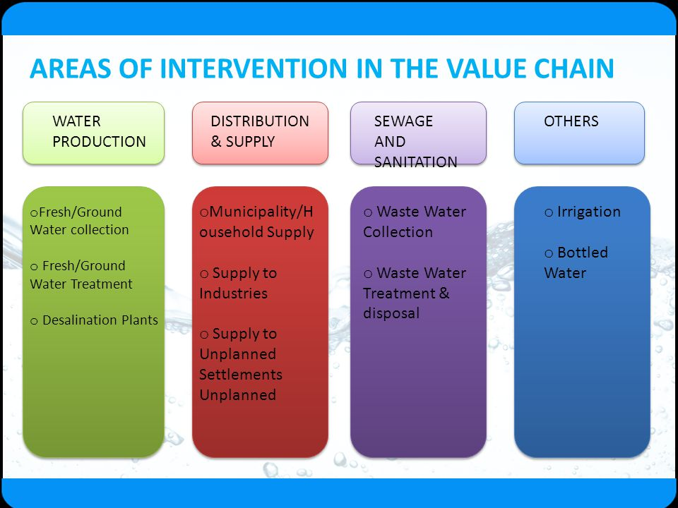 AREAS OF INTERVENTION IN THE VALUE CHAIN