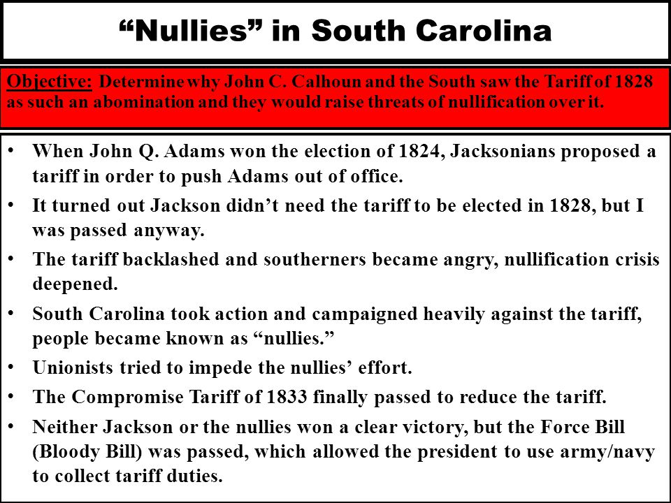 Nullies in South Carolina