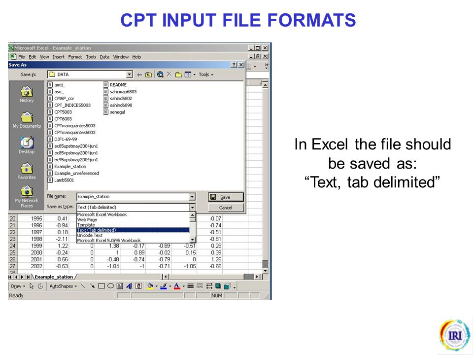 In Excel the file should be saved as: