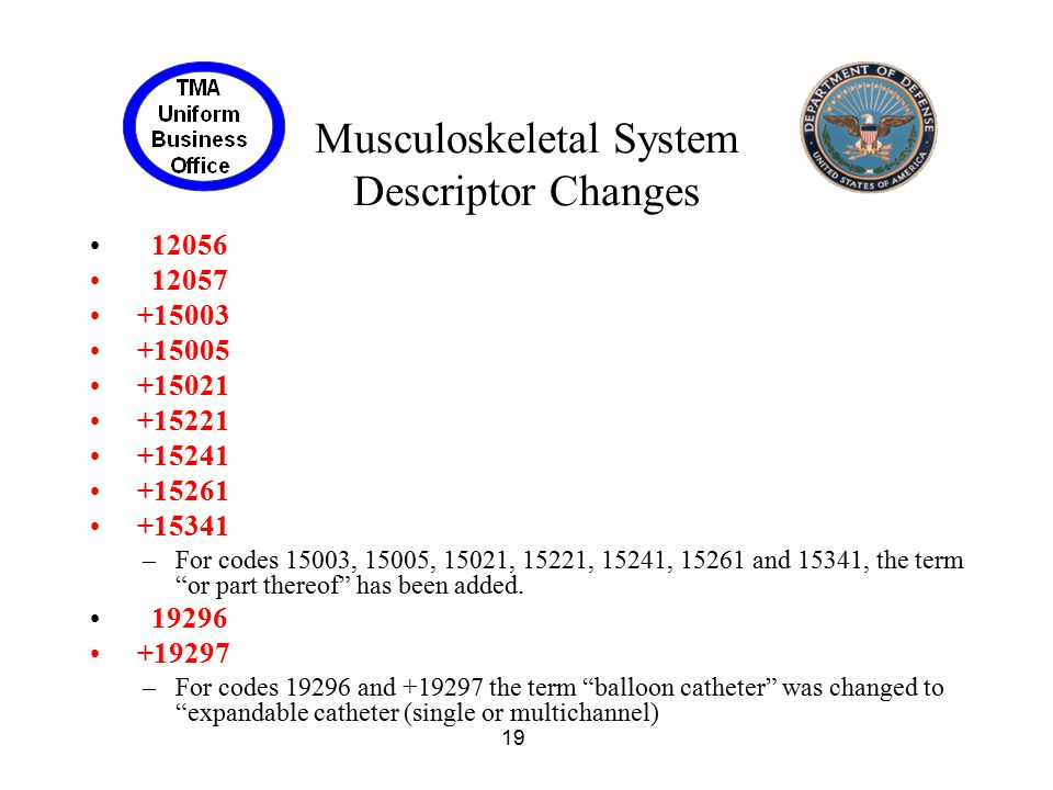 Musculoskeletal System Descriptor Changes