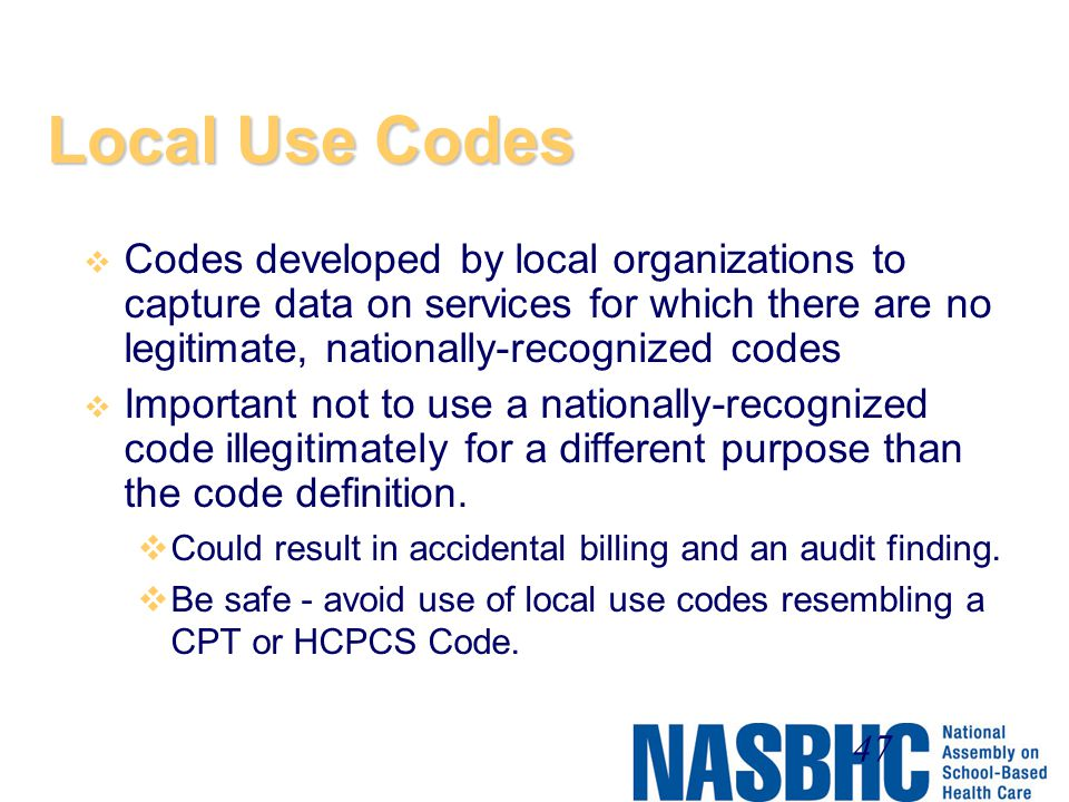 Local Use Codes Codes developed by local organizations to capture data on services for which there are no legitimate, nationally-recognized codes.