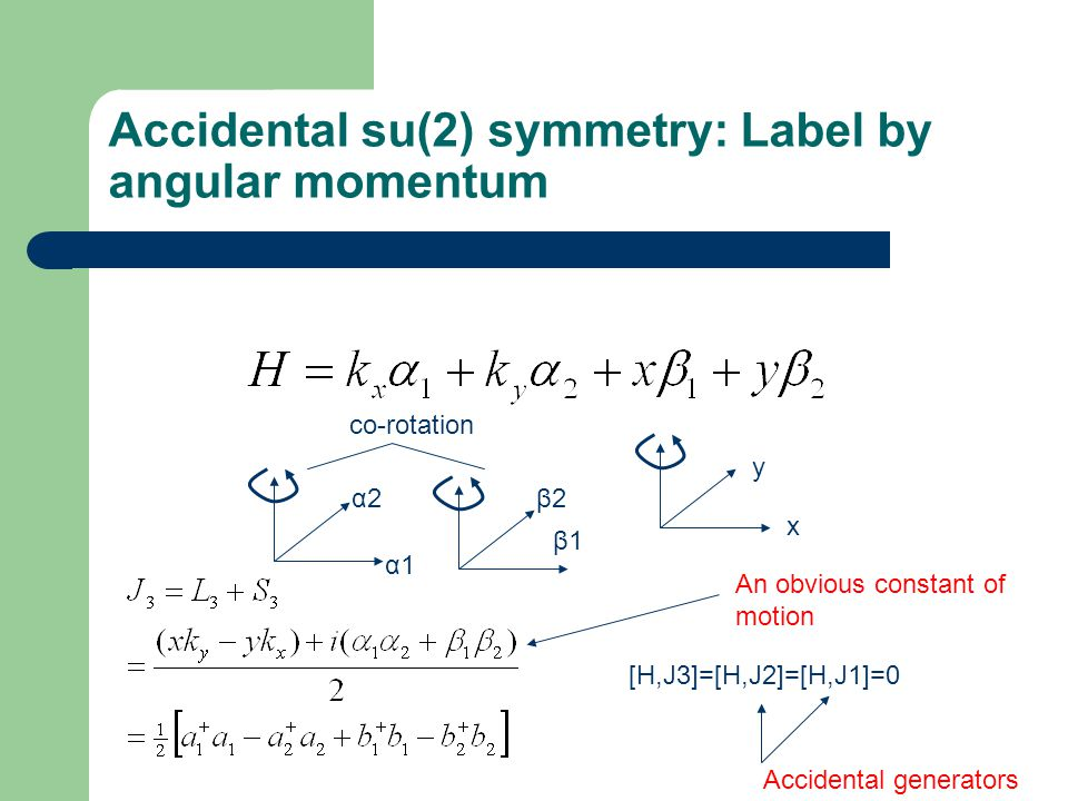 Accidental su(2) symmetry: Label by angular momentum