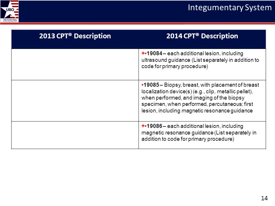 Integumentary System 2013 CPT® Description 2014 CPT® Description