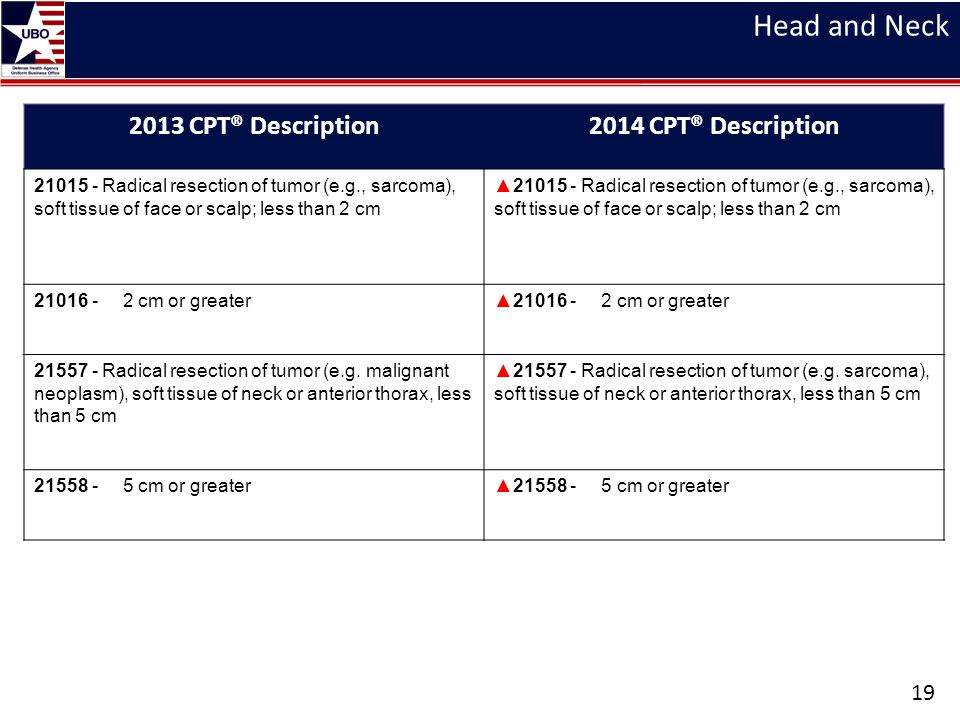 Head and Neck 2013 CPT® Description 2014 CPT® Description