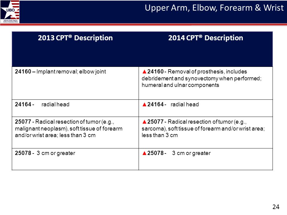 Upper Arm, Elbow, Forearm & Wrist