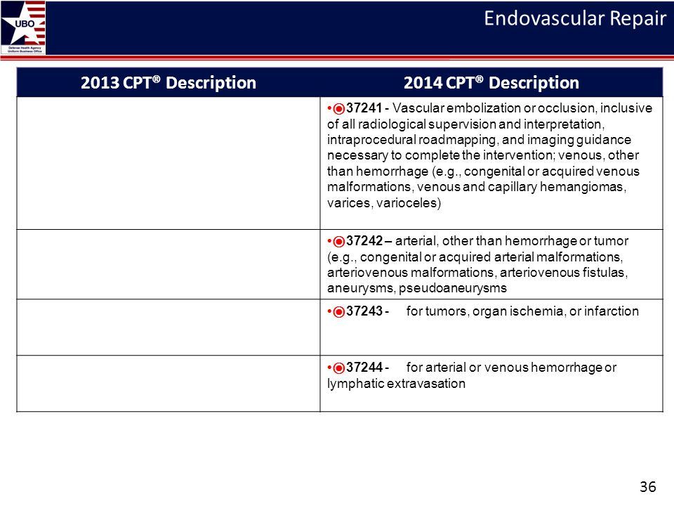Endovascular Repair 2013 CPT® Description 2014 CPT® Description