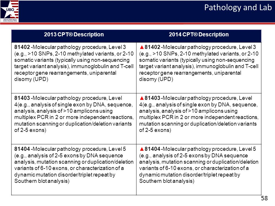 Pathology and Lab 2013 CPT® Description 2014 CPT® Description