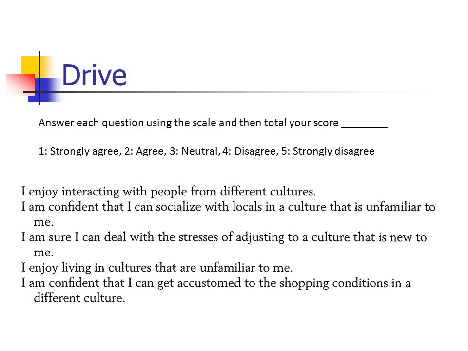 Drive Answer each question using the scale and then total your score ________.