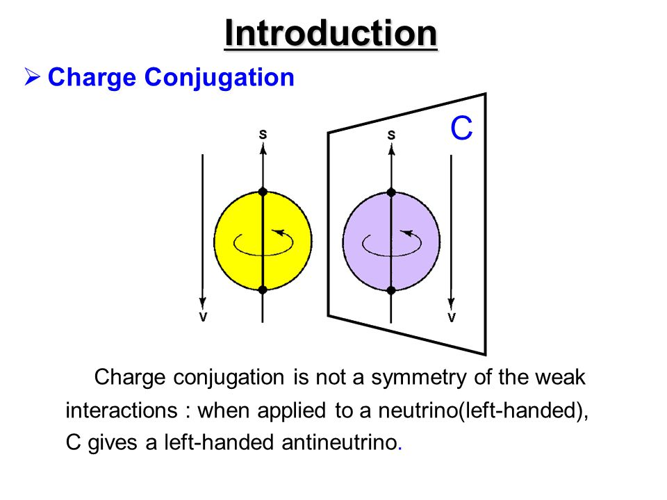 Introduction C Charge Conjugation
