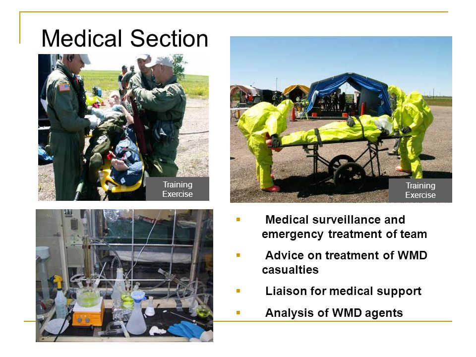 Medical Section Medical surveillance and emergency treatment of team
