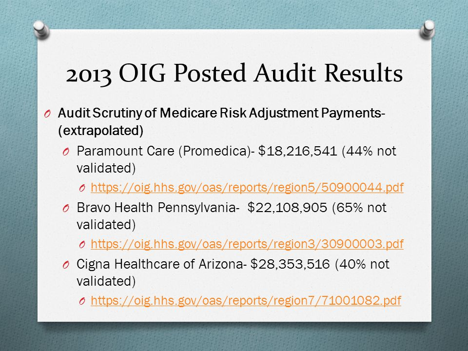 2013 OIG Posted Audit Results