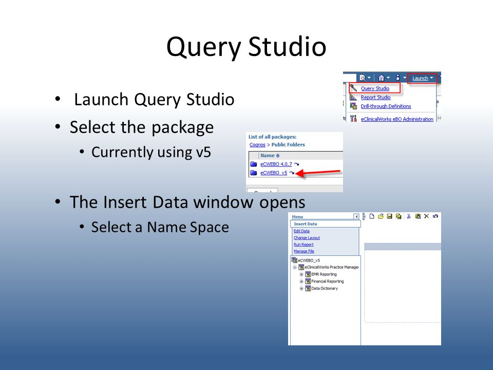 Query Studio Launch Query Studio Select the package