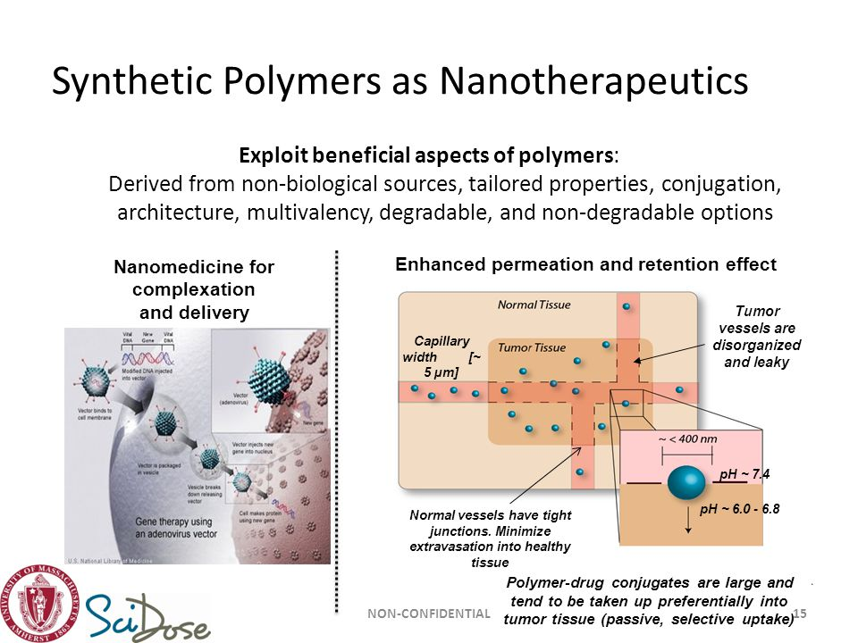 Synthetic Polymers as Nanotherapeutics