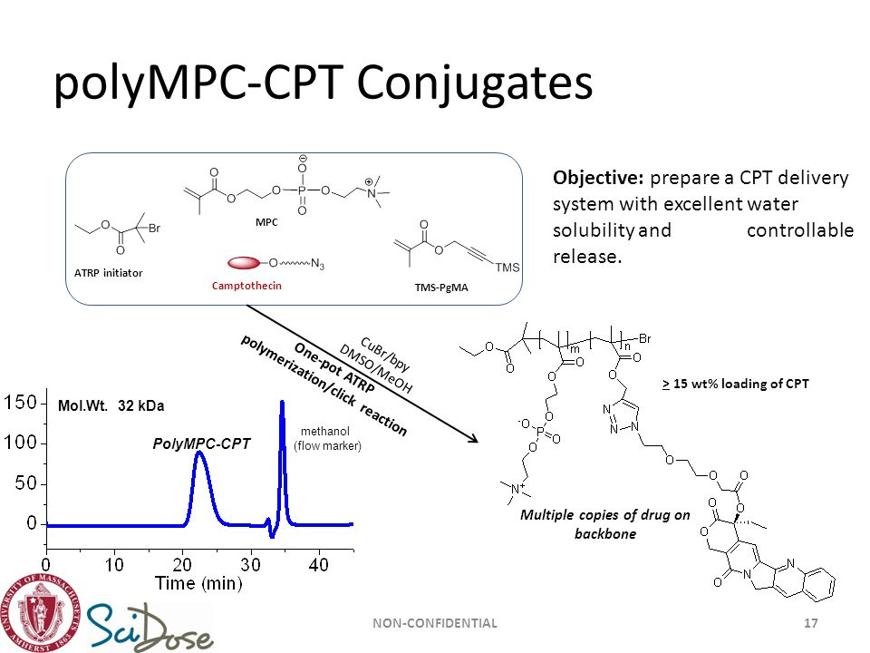 polyMPC-CPT Conjugates