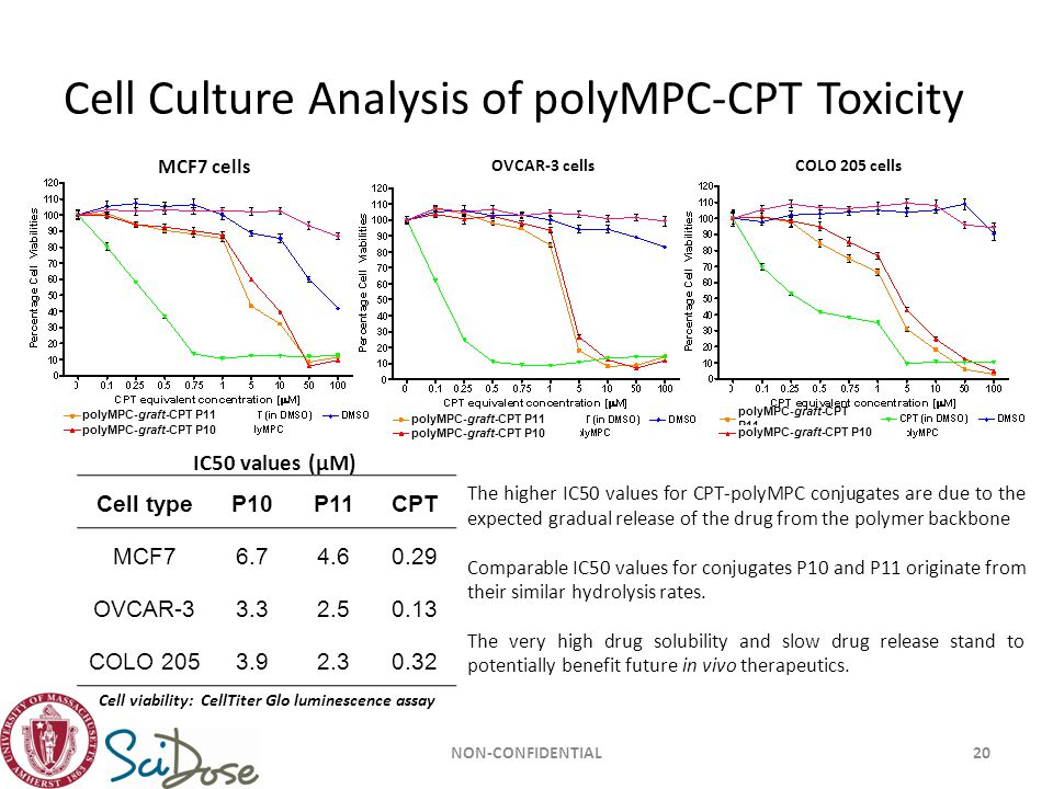 Cell Culture Analysis of polyMPC-CPT Toxicity