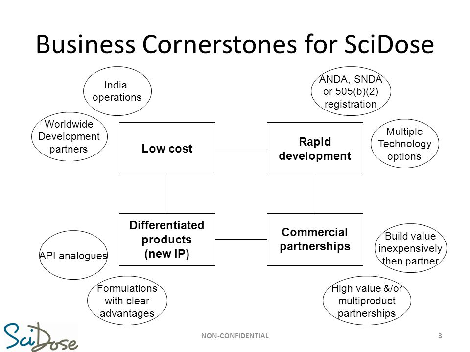 Business Cornerstones for SciDose