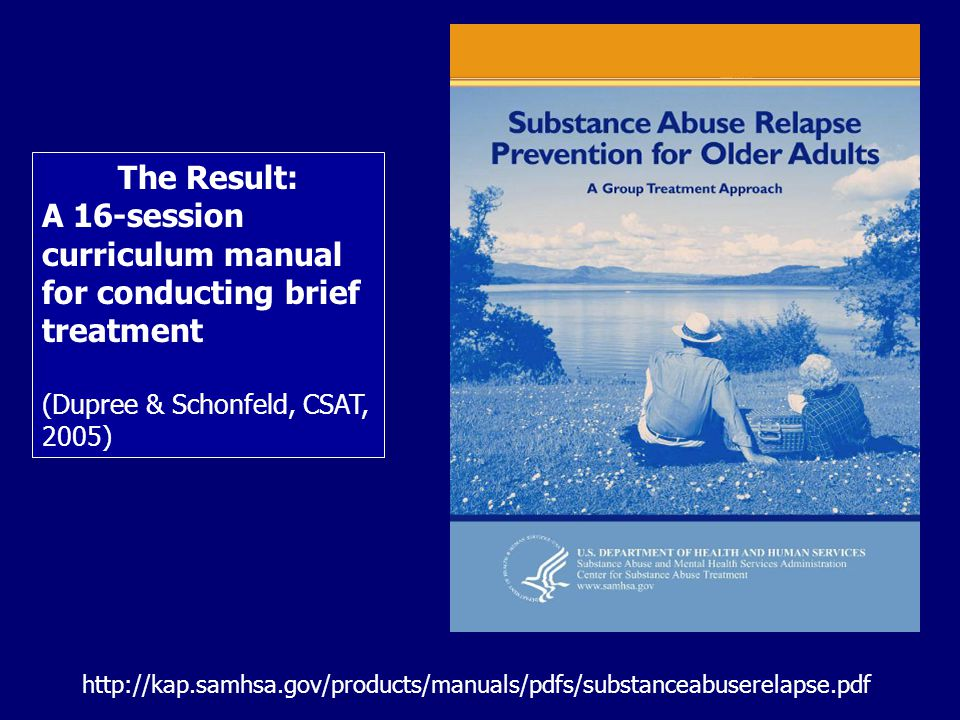 A 16-session curriculum manual for conducting brief treatment