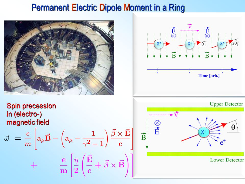 Permanent Electric Dipole Moment in a Ring