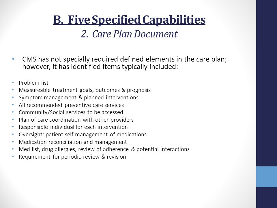 B. Five Specified Capabilities 2. Care Plan Document