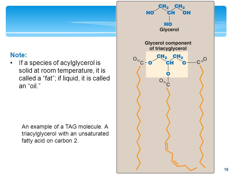 Note: If a species of acylglycerol is solid at room temperature, it is called a fat ; if liquid, it is called an oil.