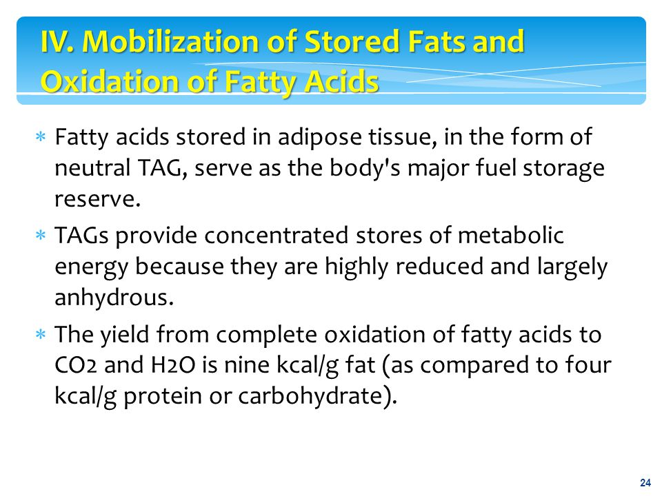 IV. Mobilization of Stored Fats and Oxidation of Fatty Acids
