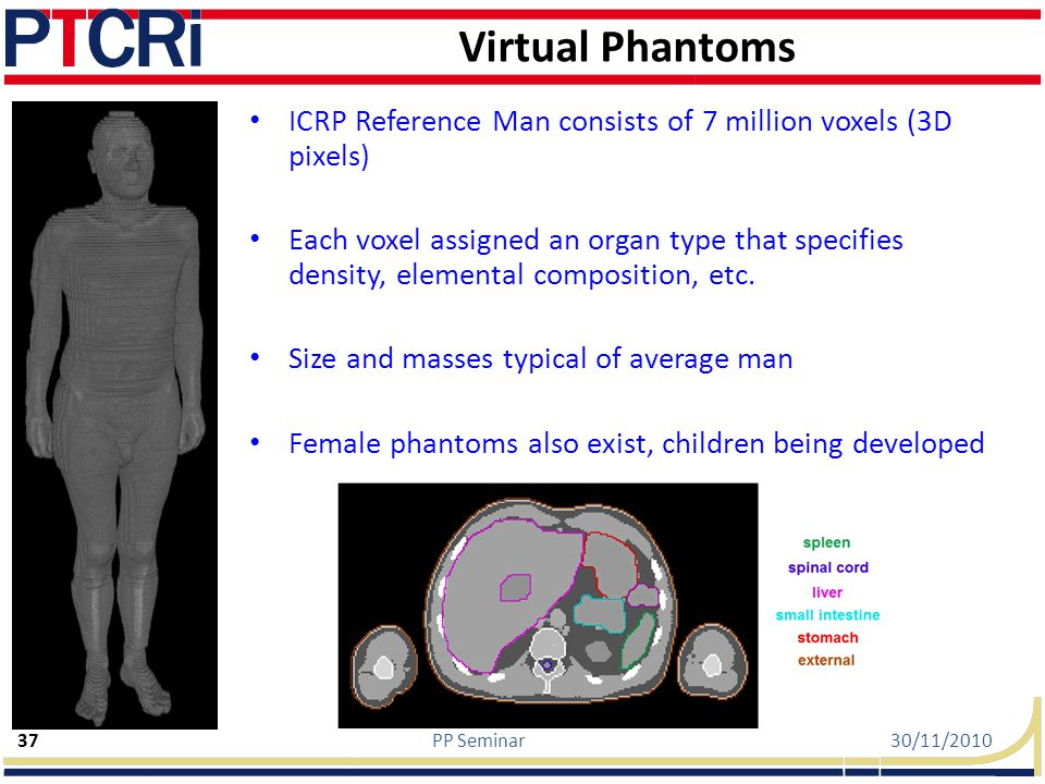 Virtual Phantoms ICRP Reference Man consists of 7 million voxels (3D pixels)