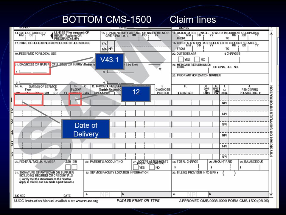 BOTTOM CMS-1500 Claim lines