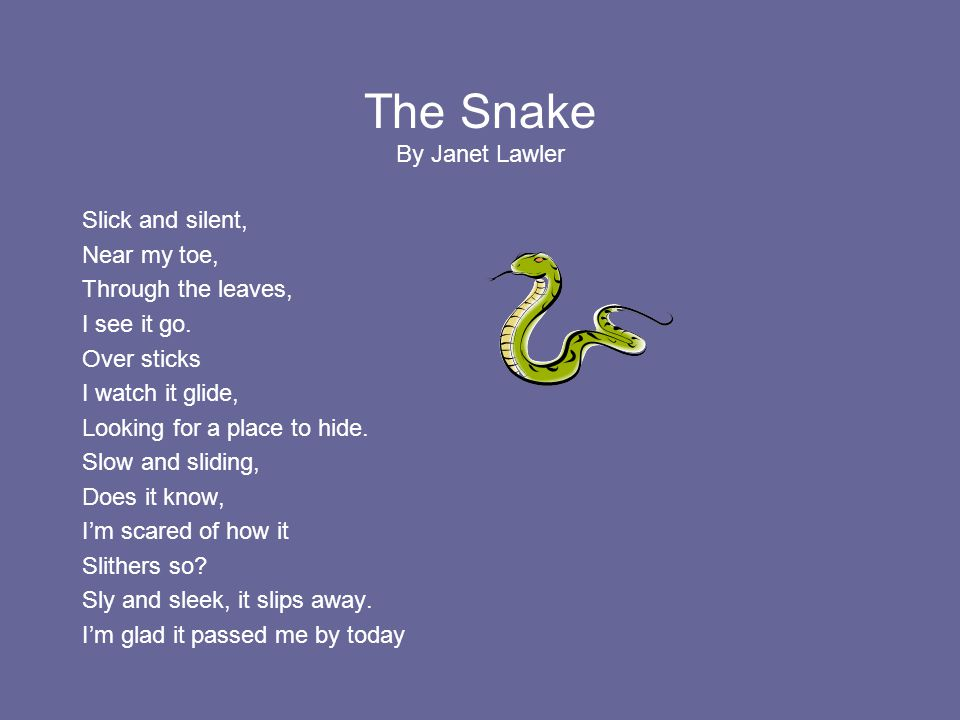 The Snake By Janet Lawler